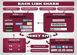 Backlink Shark